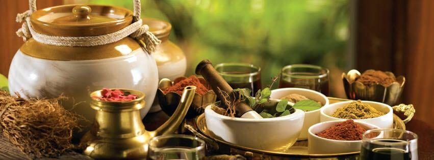 Ajurvédske bylinky a koreniny v tradičných indických miskách